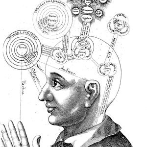 Technoshamanism Rites : Chapter IV - Consciousness