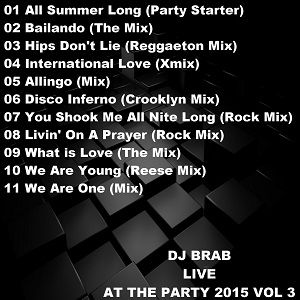 DJ Brab - Live At The Party 2015 Vol 3 (Section 2015)