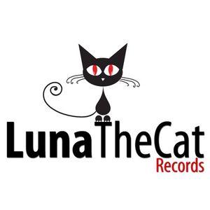 LunaTheCat Show on DE Radio - Mark Hjorthoy