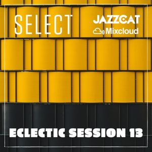 Eclectic session 13