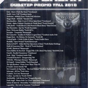 Big Basha - Dubstep Promo Fall 2010 - Betamorph
