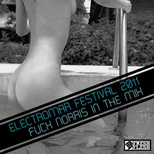 ELECTROMAR FESTIVAL 2011 / FUCK NORRIS IN THE MIX