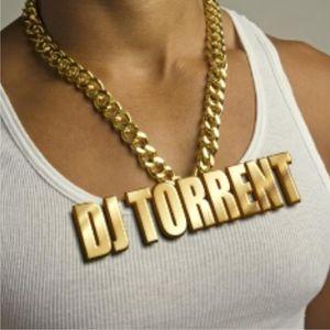 DJ TORRENT - REMIXLAND 2010.01