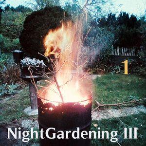 DatschaRadio 19 NightGardening III