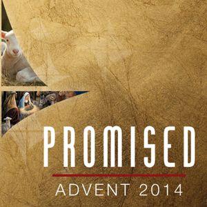 Promised Savior