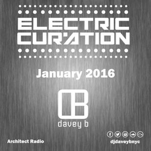 Electric Curation January 2016