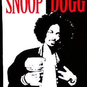 Bigg Snoop Mix::