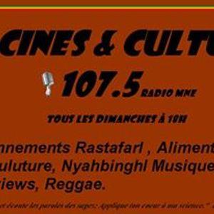 Racine&Culture interview Luc animalsace