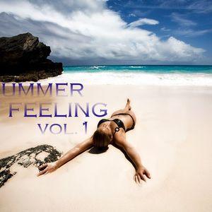 Dj Naked Summer Feelling 2k12