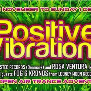 Zero One Live @ Positive Vibrations 2013