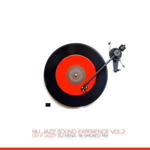 Nu Jazz Sound Experience Vol.2