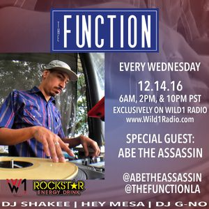 The Function (Episode 50) with guest ABE THE ASSASSIN