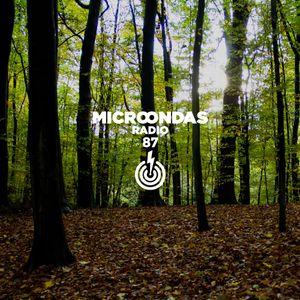 Microondas Radio 87 / Agorazein, Machinedrum, Bonobo, Okzharp & Manthe Ribane, DVA, Bearoid, Noia