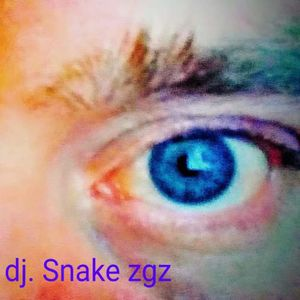 Snake zgz simplemente musica