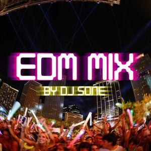 DJ SONE EDM MIX (2013/February)