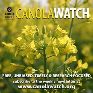 The past, present and future of canola
