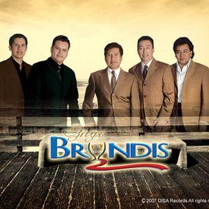 BRYNDIS HITS