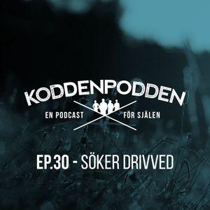 EP 30 (Söker drivved)