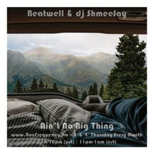 Beatwell & dj ShmeeJay - Ain't No Big Thing - 2017-06-08