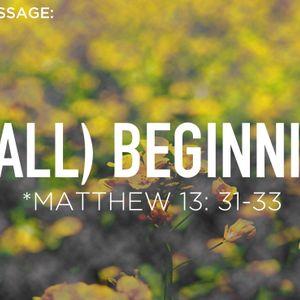(small) Beginnings