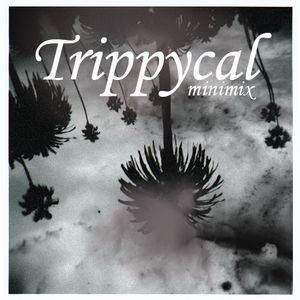 Trippycal (minimix)