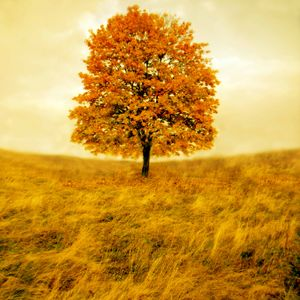 al Nai'r - Autumn Mixtape V.1