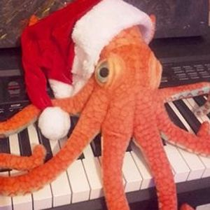 An Octopus for Christmas