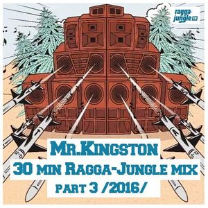 Mr.Kingston - 30 min ragga-jungle mix part 3 (2016)