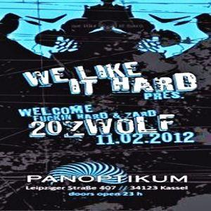 Null Forge @ We Like It Hard - Panoptikum Kassel - 11.02.2012