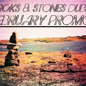 Sticks & Stones Dubs February Promo Mix