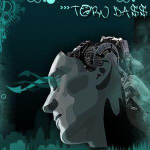 torn bass 09