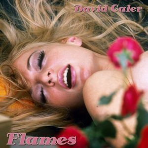David Caler - Flames