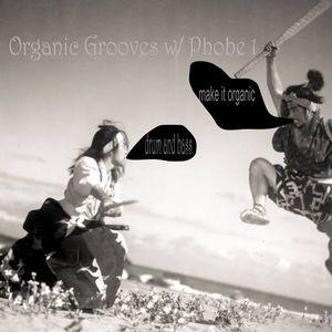 Jon & Phobe1 - Organic Grooves No. 10 @ Drums.ro Radio (24.05.2017)