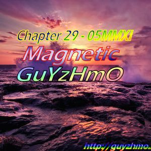 Chapter29 Magnetic 05MMXI