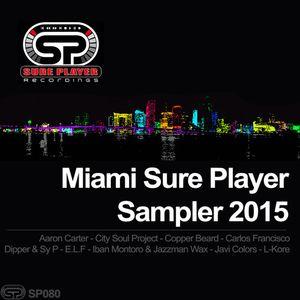 Miami Sure Player Sampler Promo Mix - VA