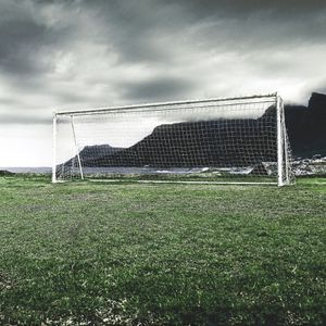 Brazilian Fields