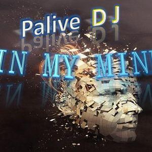 DJ Palive - In My Mind (Risk Disk vol. 4)
