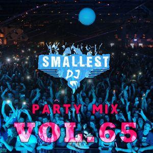 DJ Smallest - Party mix vol. 65