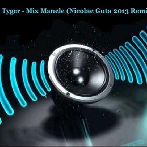DJ Tyger - Mix Manele (Nicolae Guta 2013 Remix)