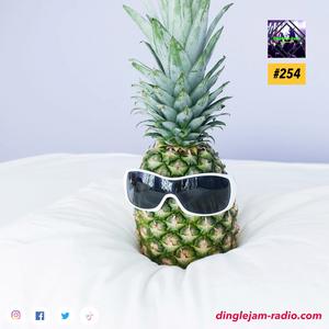 Dinglejam Radio #254 (Crazy Hour Edition Vol. 3)