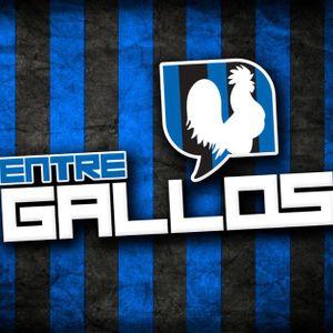 Entre Gallos 100112