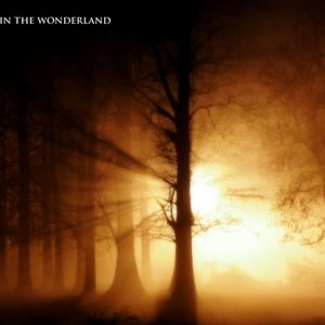 Welcome in the WonderLand