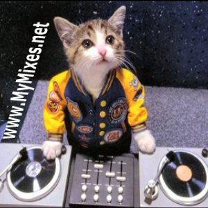 DJ 22 - Mini House Mix