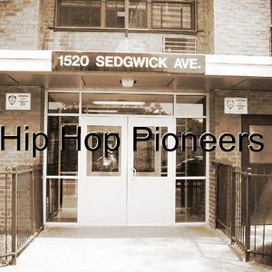 DJ Big Q - Hip Hop Pioneer 2