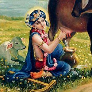 Shree Balaram Prabhu appearance part1, Dole 2012