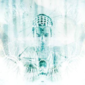 Evolver Podcast: Revolutionizing Exchange with Charles Eisenstein, Entering Dharma Gates with Anne W