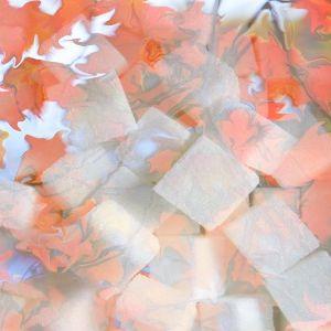 Autumn Electro-House Mix