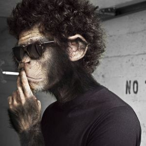 Funky Disco Monkey (Compiled and Mixed by Dj Ozzy K. a.k.a. Atmosfear