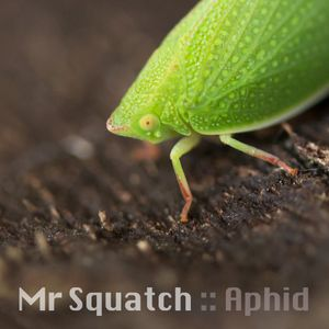 Aphid - Tech and Progressive House Mix 2013