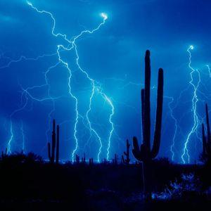 Digital Acid Trip's Electric Bass Storm Demo